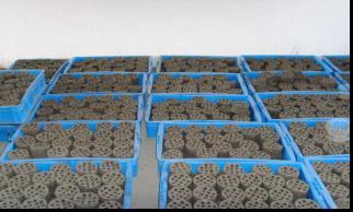 无锡金园污泥制生物质燃料
