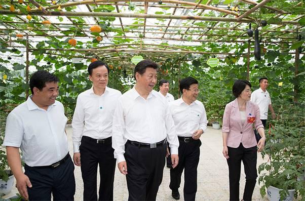 """<b>习近平与""""十三五""""五大发展理念:绿色发展理念</b>"""