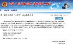 """<b>新利官方网站下载环保荣获国家首批专精特新""""小巨人""""企业称号</b>"""